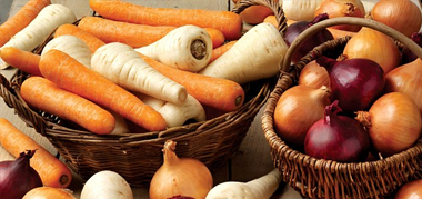 New England Vegetables and Root Crops